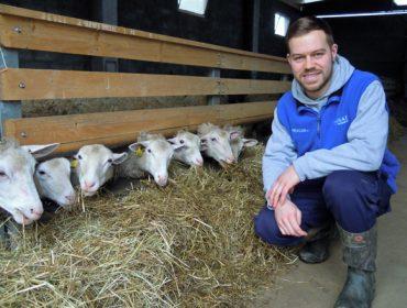 Gandería Rivera Otero, a aposta dun mozo de 25 anos polo sector ovino