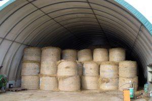 A ración das vacas secas e a das xovencas leva herba seca