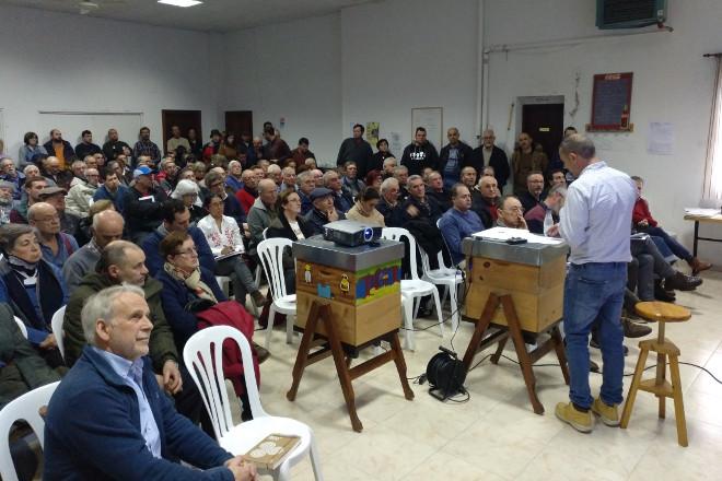 Dúbidas no sector apícola sobre a eficacia do novo plan da Xunta contra a Vespa velutina