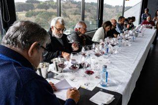 Catas en liña dos viños da D.O. Ribeira Sacra para comenzar o 2021