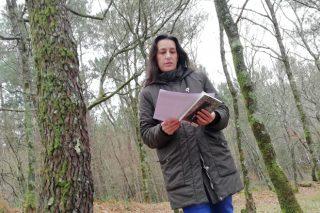 """PEFC implantará este ano un sistema de teledetección que suporá un gran avance na certificación forestal"""