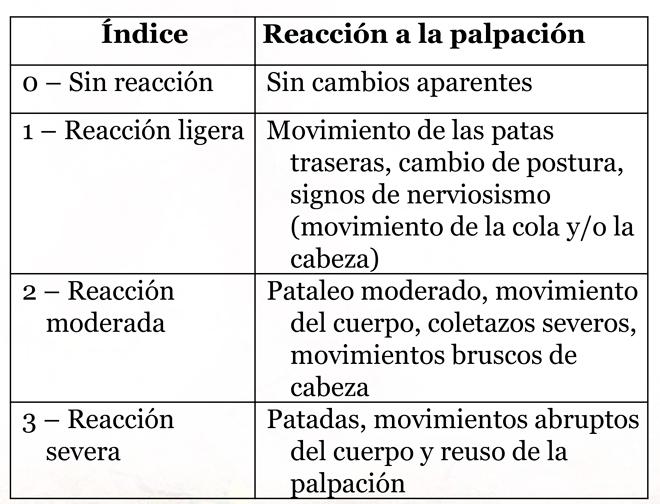 Reaccion-palpacion-ubre-vacas--secado-