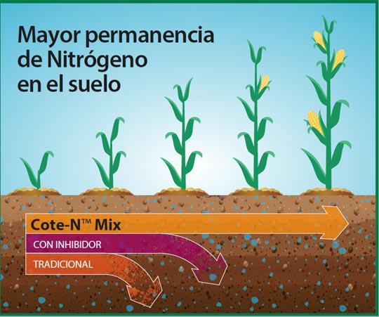 cadro nitroxeno solo