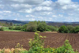 A Xunta aboa estes días 16 millóns de euros a 4.000 produtores polas axudas da PAC 2019