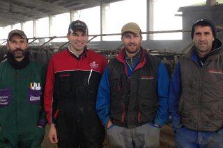 Gandaría Ambrosini: 41 litros de media por vaca cun 4,29% de graxa