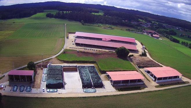 Leite Noso dá o salto no campo, con máis de 200.000 litros diarios de recollida