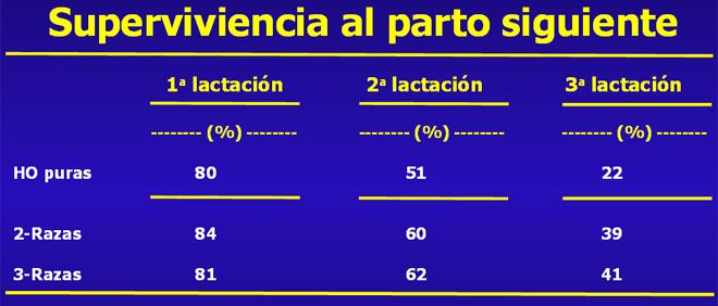 grafico lonxevidade Procross ESP