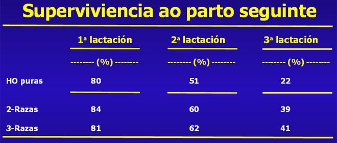 grafico lonxevidade Procross GAL