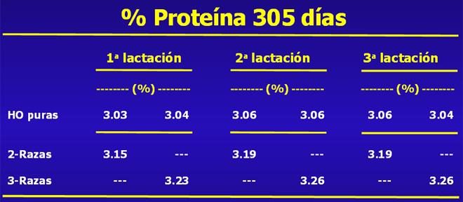 grafico proteina Procross