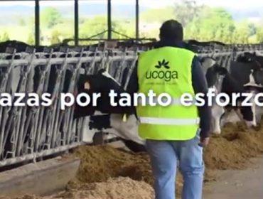 'Unidos por ti', campaña de Ucoga de apoyo al agro