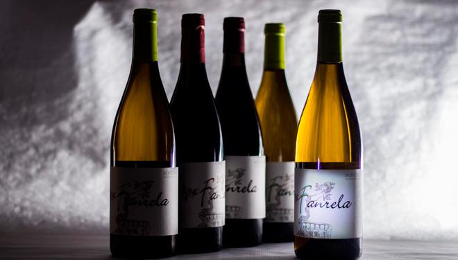 Fanrela es el primer vino que ponen en el mercado y para el año espera sacar también un tinto.
