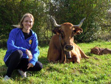 Gandería Álvarez y Velasco SC, catro séculos de trashumancia e tradición vaqueira en Asturias