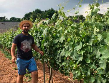 Fanrela, un viño para o optimismo, nado en plena pandemia