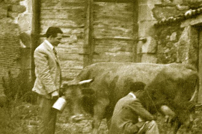 Un dos controladores do programa de mellora leiteira da raza rubia galega