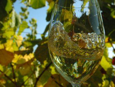 O viño branco con Denominación de Orixe é o que máis incrementa o seu consumo nos fogares de España