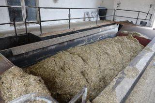 Centro de alimentación, desde onde sae a ración para os animais.