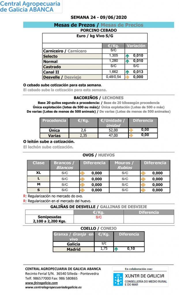Central-Agropecuaria-Galicia-09_06_2020--porcino-