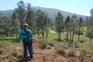 A Xunta actuará en 5.500 hectáreas de monte e 2.200 quilómetros de pistas para previr o lume