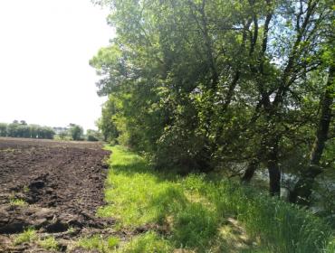 Que ecoesquemas da PAC poden encaixar nas granxas galegas?