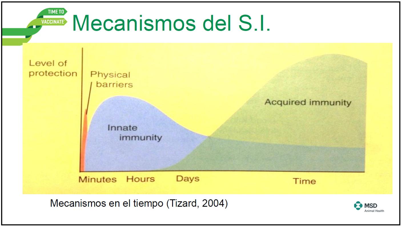 vacina efa fonteboa msd 1