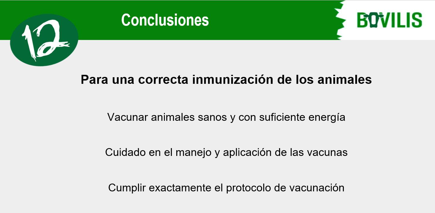 vacina efa fonteboa msd 7