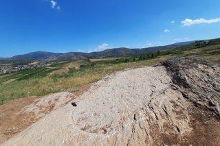 Cando comezou a facerse viño en Valdeorras?