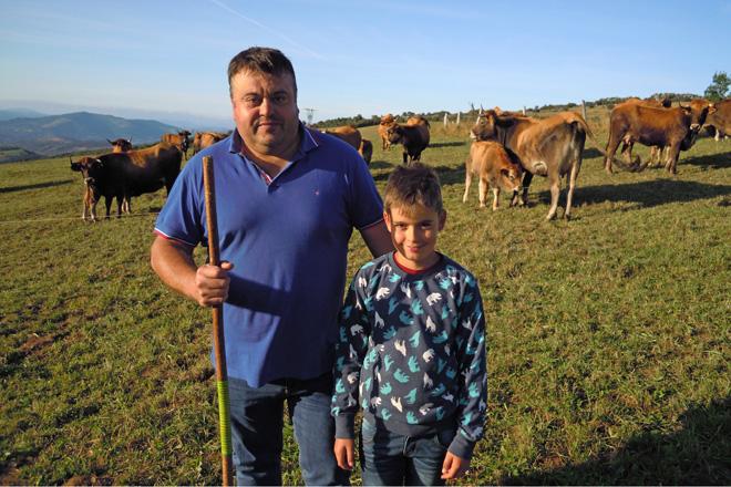 Carlos e o seu fillo Samuel coas súas vacas vianesas en Biduedo (Triacastela)