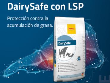 DairySafe: O aditivo de preparto para mellorar a saúde do fígado en vacas leiteiras e reducir a cetose