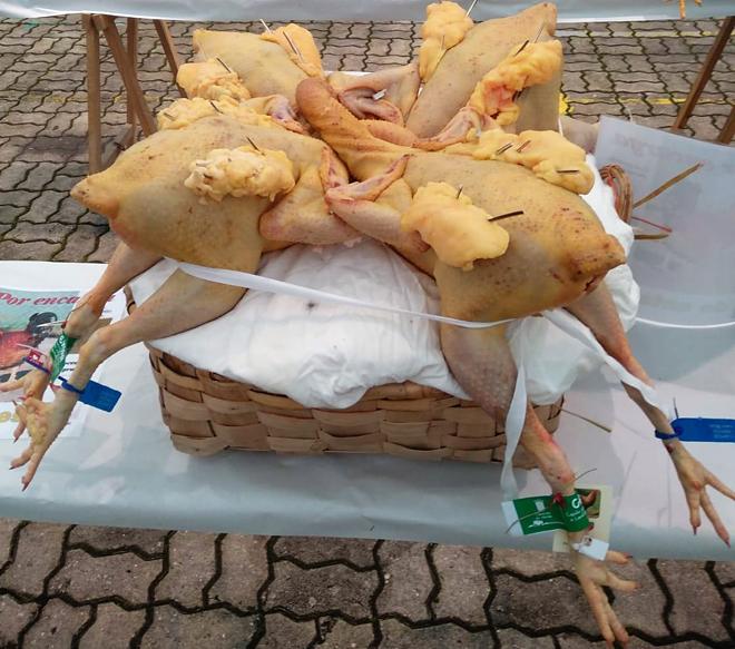 Monasterio é o único criador de raza Mos que acude cada ano á Feira do Capón de Vilalba