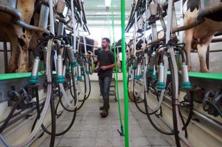 Sobe o prezo do leite de vaca en novembro en España e cae a produción