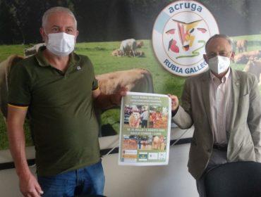 Concurso e poxa nacional de Rubia Galega este sábado no Corgo