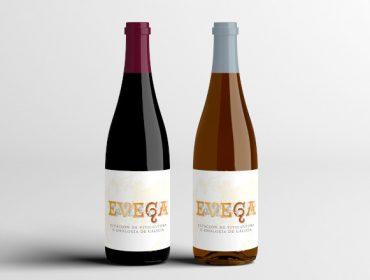 Presentada a nova colleita de viño da EVEGA, elaborado con castes autóctonas galegas
