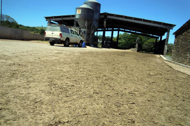 Instalacións para o muxido e a alimentación das vacas en produción. Cementaron o camiño para a saída das vacas ao pasto