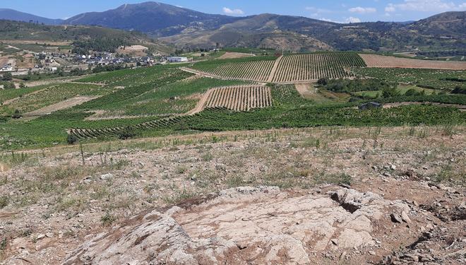 lagares-rupestres-Larouco-Valdeorras-enoturismo