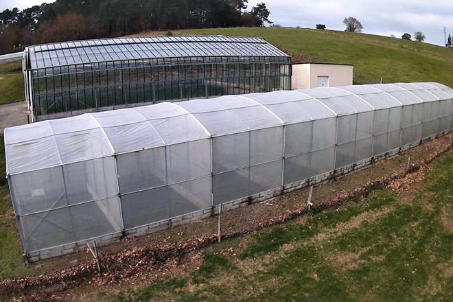 A estrutura creada ten forma de invernadorio con distintos compartimentos pero en vez de plástico emprega unha malla que deixa pasar o vento e a chuvia