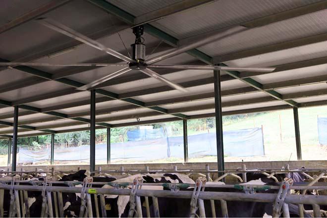 Ventilador de teito en Casa Devesa de Monforte de Lemos