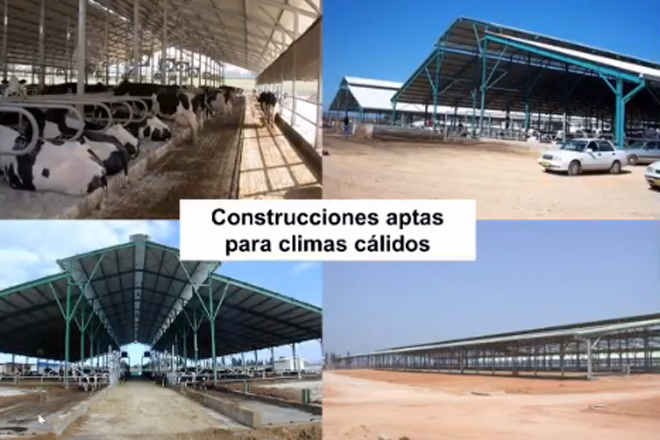 Construcciones-para-climas-calidos-MSD-Israel-