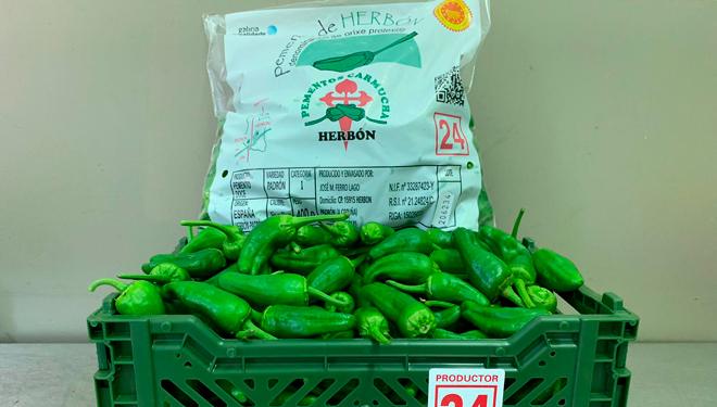 Pementos-Carmucha-Herbon-