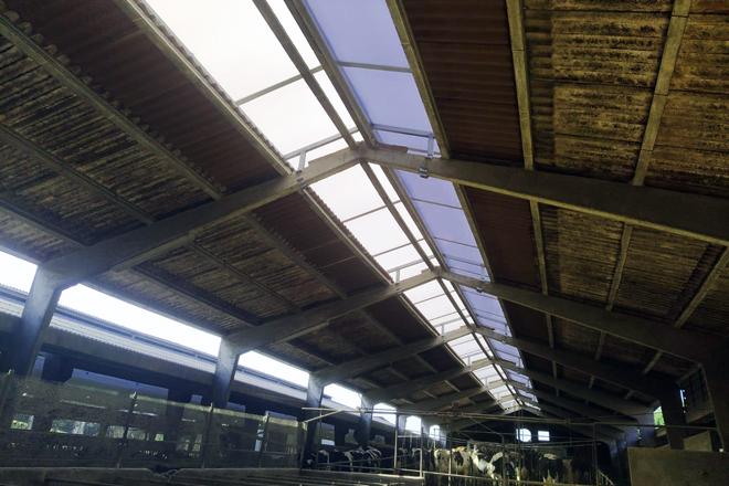 A cumbreira de policarbonato está dotada dunhas planchas metálicas que melloran o efecto chimenea ao lograr que a circulación de aire sobre o teito da nave impida a saída do aire do interior