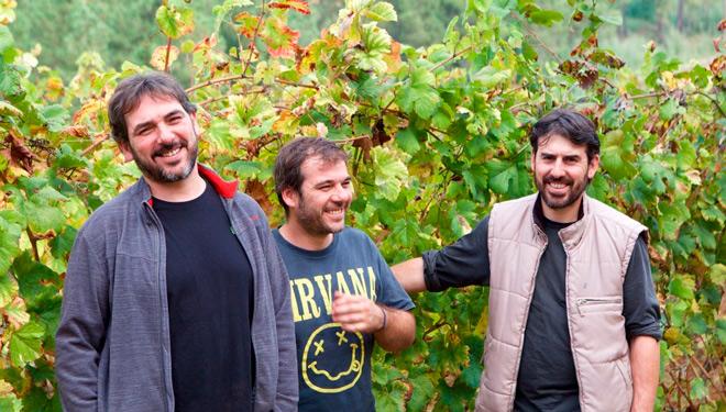 Cume do Avia, una idea de juventud para unos vinos de autor en ecológico