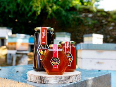 A IXP Mel de Galicia amparará o mel de melada galego