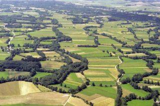 Os bosques de ribeira galegos, unha potencialidade ambiental a apoiar na próxima PAC