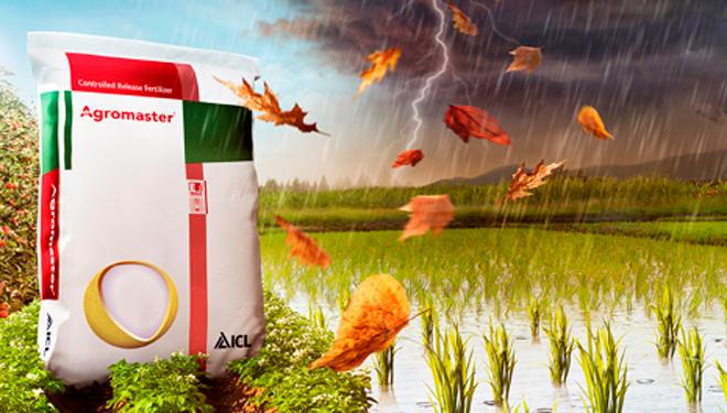 Agromaster, abonos que garantizan la mejor nutrición de cultivos y reducen el impacto al medio