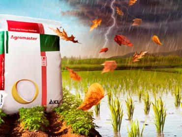 Agromaster, abonos que garanten a mellor nutrición de cultivos e reducen o impacto ao medio