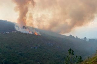 Dez colectivos urxen medidas para frear a degradación dos montes afectados polos lumes