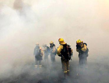 Piden a convocatoria do Consello Forestal de Galicia ante a crise polos lumes forestais