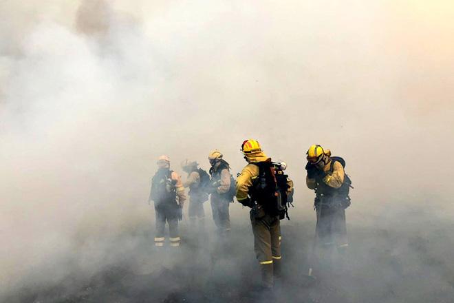 Piden la convocatoria del Consejo Forestal de Galicia ante la crisis por los fuegos forestales