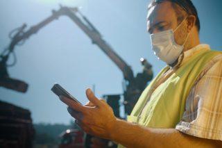 Desenvolven unha ferramenta intelixente de xestión e trazabilidade nas cortas de madeira