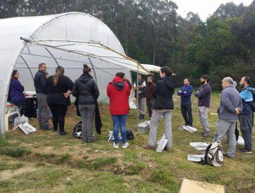 Cursos sobre control de pragas e manexo do solo en agricultura ecolóxica
