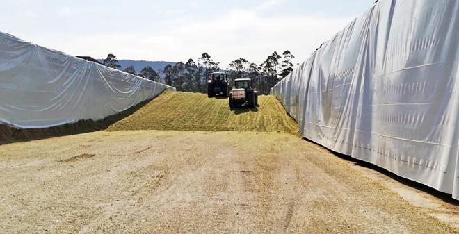 Así funciona o CAVI, o maior centro de forraxes de Galicia para vacún de leite